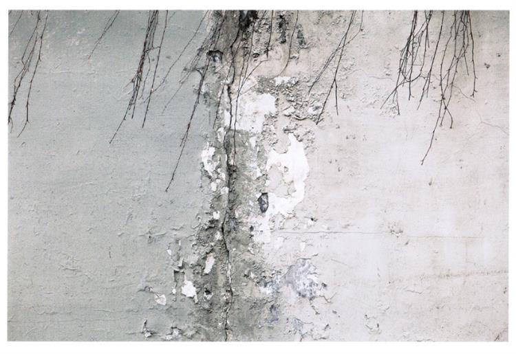 The wall #2, 2010 - Аббас Кіаростамі