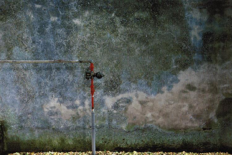 The wall #7, 2010 - 阿巴斯·奇亞羅斯塔米