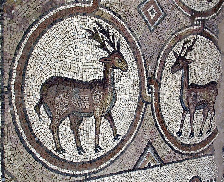 Petra Church Floor Mosaic, c.450 - c.550 - Byzantine Mosaics