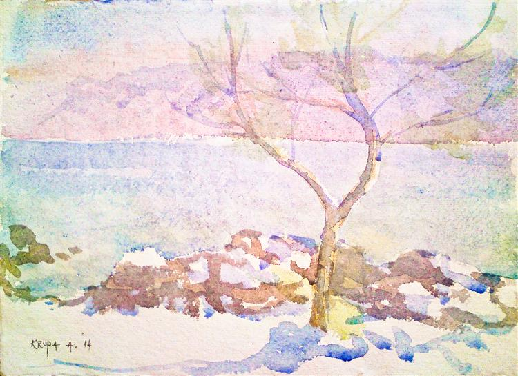 The tree on Adriatic Coast and Velebit Mnt. (24th July 2014), 2014 - Alfred Freddy Krupa