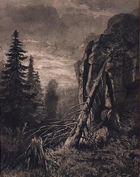 Valaam. Kukko., c.1859 - c.1860 - Ivan Shishkin