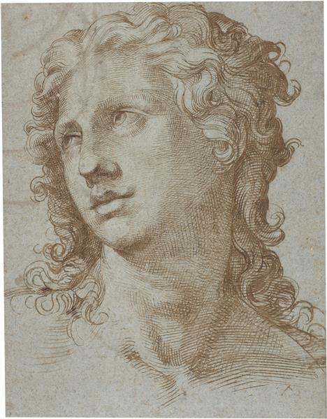 Male Head, c.1560 - c.1570 - Bartolomeo Passarotti