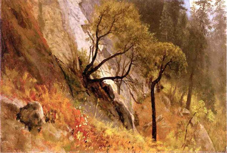 Landscape Study. Yosemite, California - Albert Bierstadt