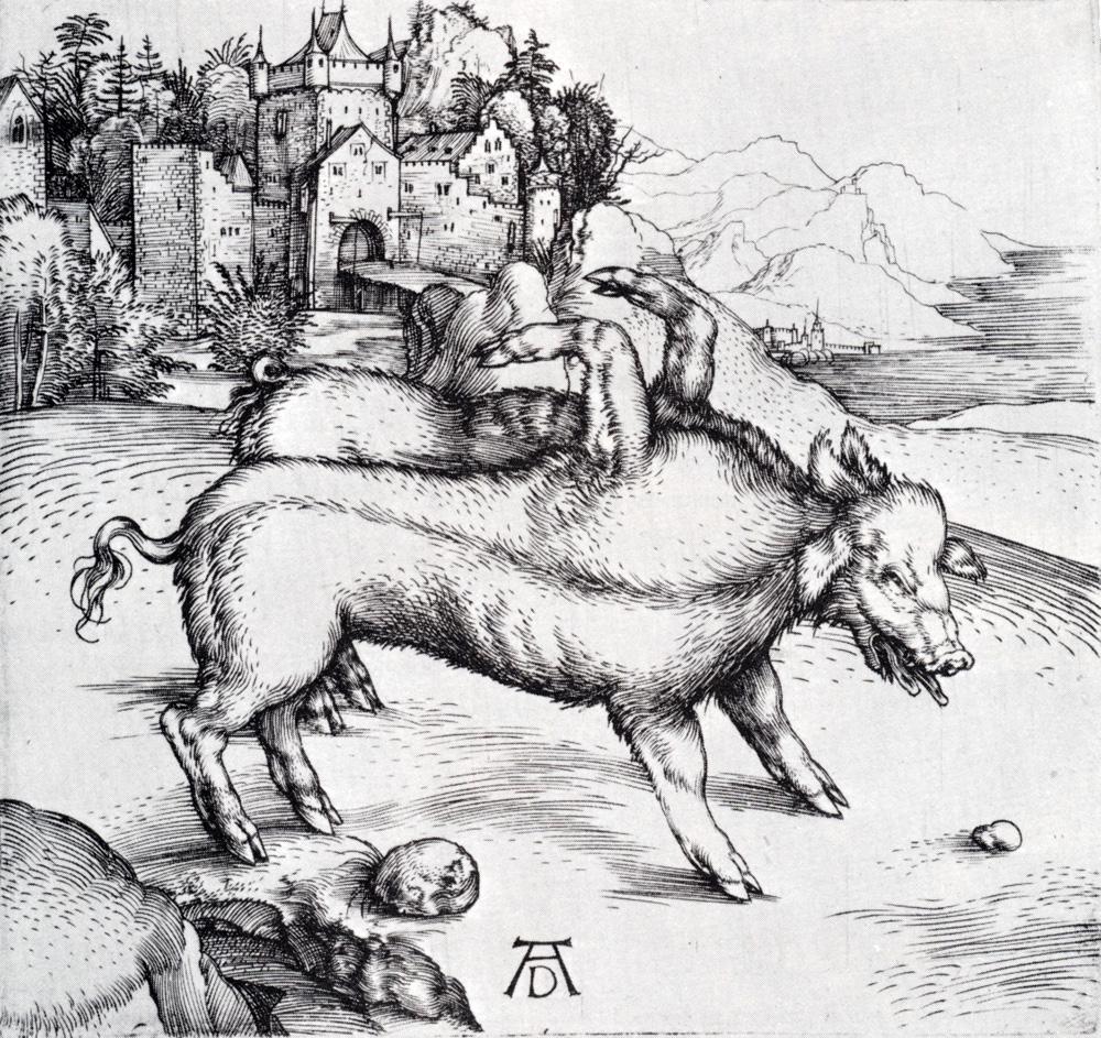 Durer Albrecht sex pig renaissance sistine dragon apocalypse
