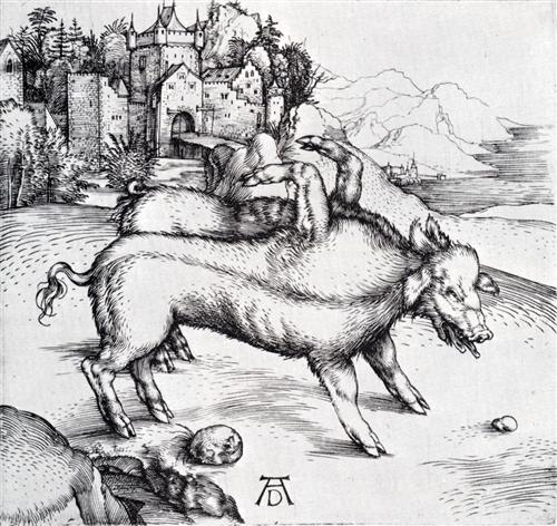 Monstrous Hog of Landser - Albrecht Durer