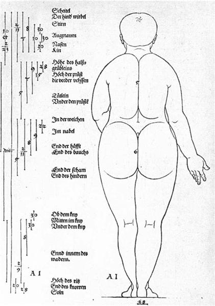 Rear view of the female, 1528 - Albrecht Durer