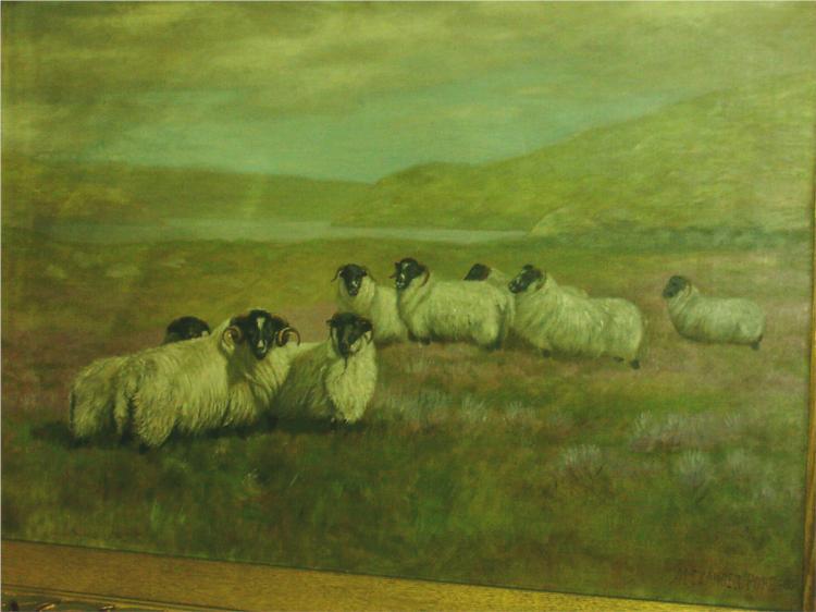 Sheep in Field, 1905 - Alexander Pope