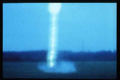 The Event: Petrified Lightning from Central Florida (with Supplemental Didactics), 1997 - Алан Макколум