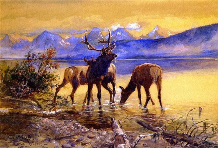 Elk in Lake McDonald, 1906 - Charles M. Russell