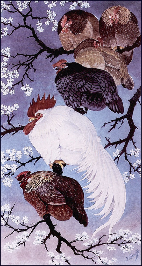 http://uploads5.wikipaintings.org/images/charles-tunnicliffe/fowl-in-a-damson-tree(1).jpg