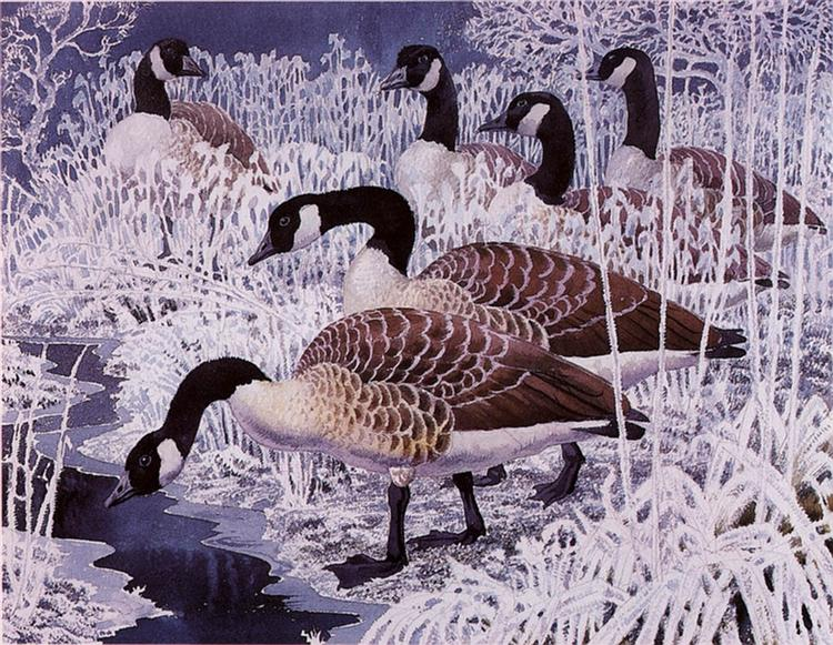 Geese and hoar-frost - Charles Tunnicliffe