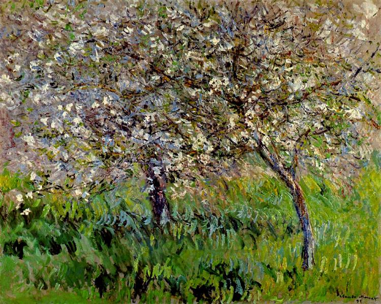 Apple Trees in Bloom at Giverny, 1900 - 1901 - Claude Monet