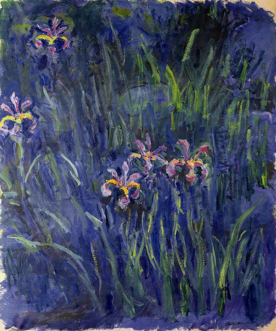 Лилейники пионы ирисы и хосты из коллекции цветов