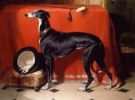 Eos, A Favorite Greyhound of Prince Albert, 1841 - Edwin Henry Landseer