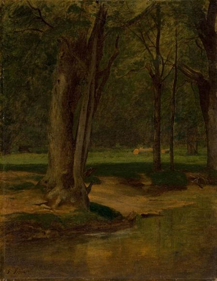 Trout Stream, North Conway, 1876 - George Inness