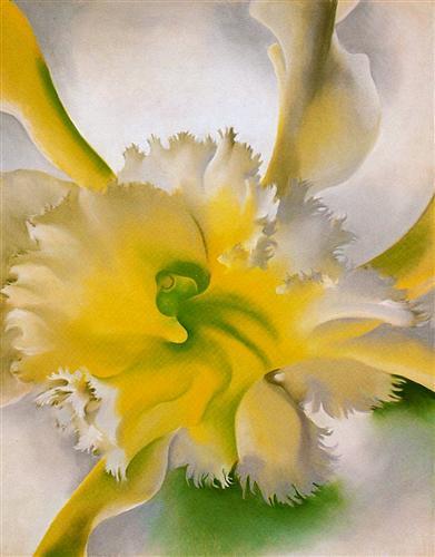 An Orchid - Georgia O'Keeffe