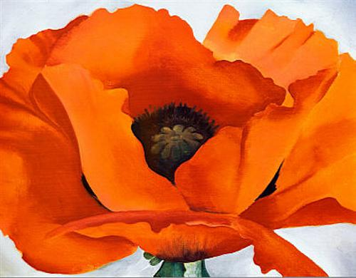 Georgia O'Keeffe Red Poppy Traditional-Modern Art