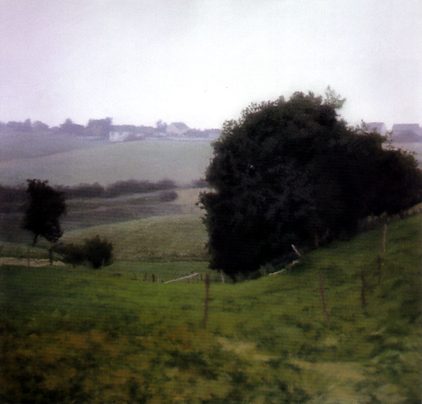 http://uploads5.wikipaintings.org/images/gerhard-richter/meadowland.jpg