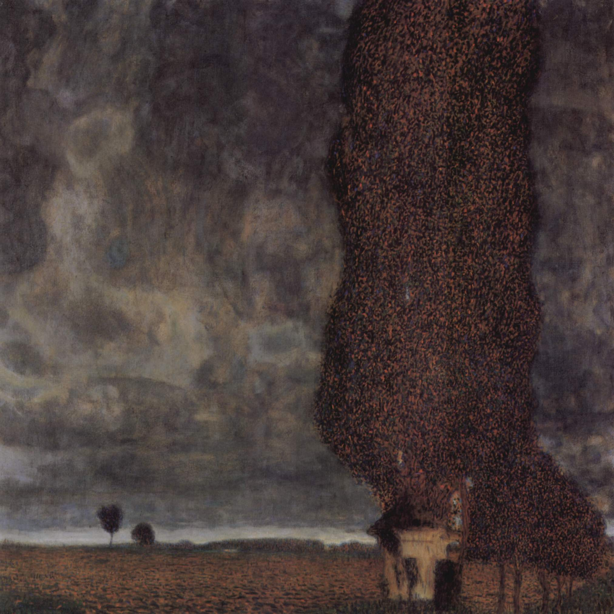 The Big Poplar II, 1902-1903