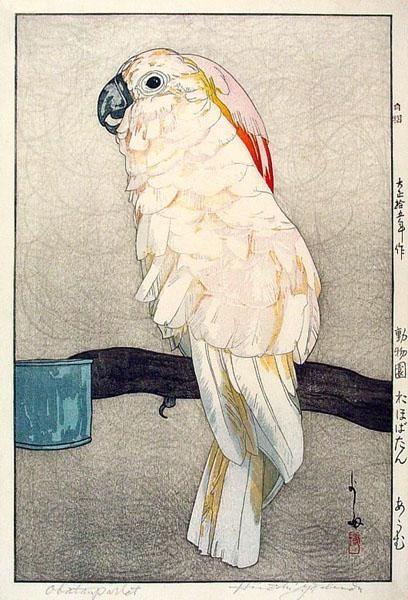 Obatan Parrot, 1926 - Hiroshi Yoshida