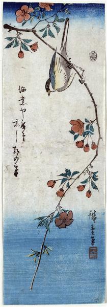 Small Bird on a Branch of Kaidozakura, 1844 - 1848 - Hiroshige