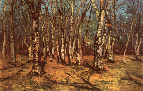 Beech Forest - Ion Andreescu