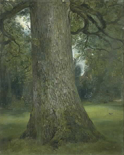 Study of the Trunk of an Elm Tree, 1821 - John Constable