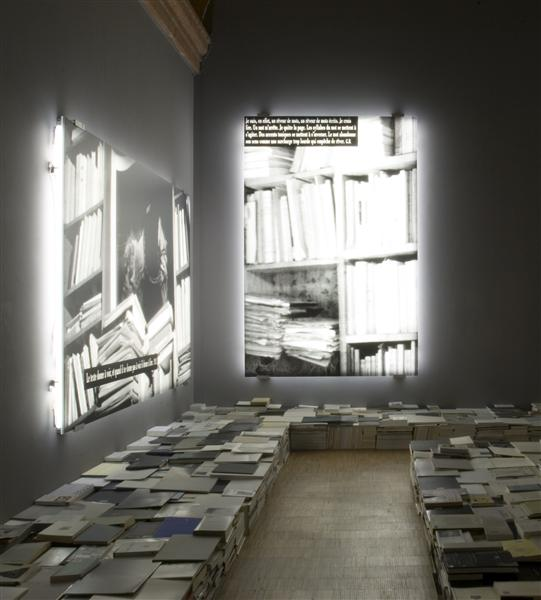 The Phenomenon of the library, 2006 - Joseph Kosuth