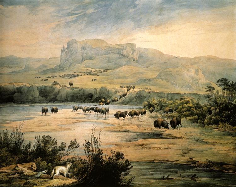 Landscape with buffalo on the upper Missouri, 1833 - Karl Bodmer
