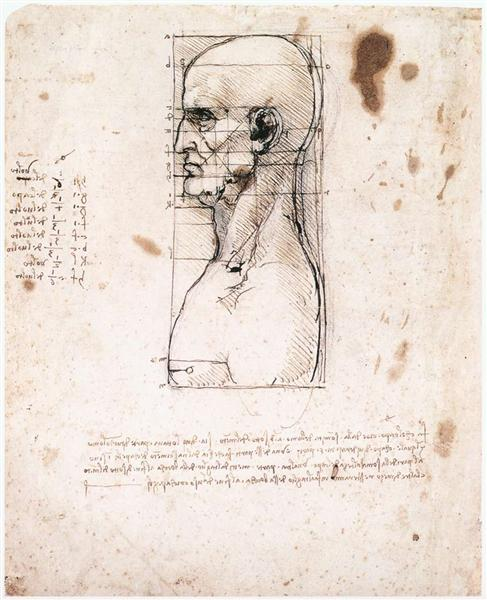 Bust of a man in profile with measurements and notes, c.1490 - Leonardo da Vinci