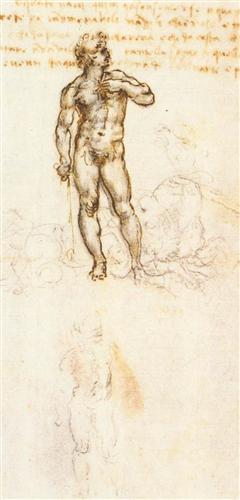 Study of David by Michelangelo - Leonardo da Vinci