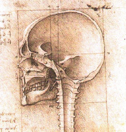 View of a Skull, c.1489 - Leonardo da Vinci