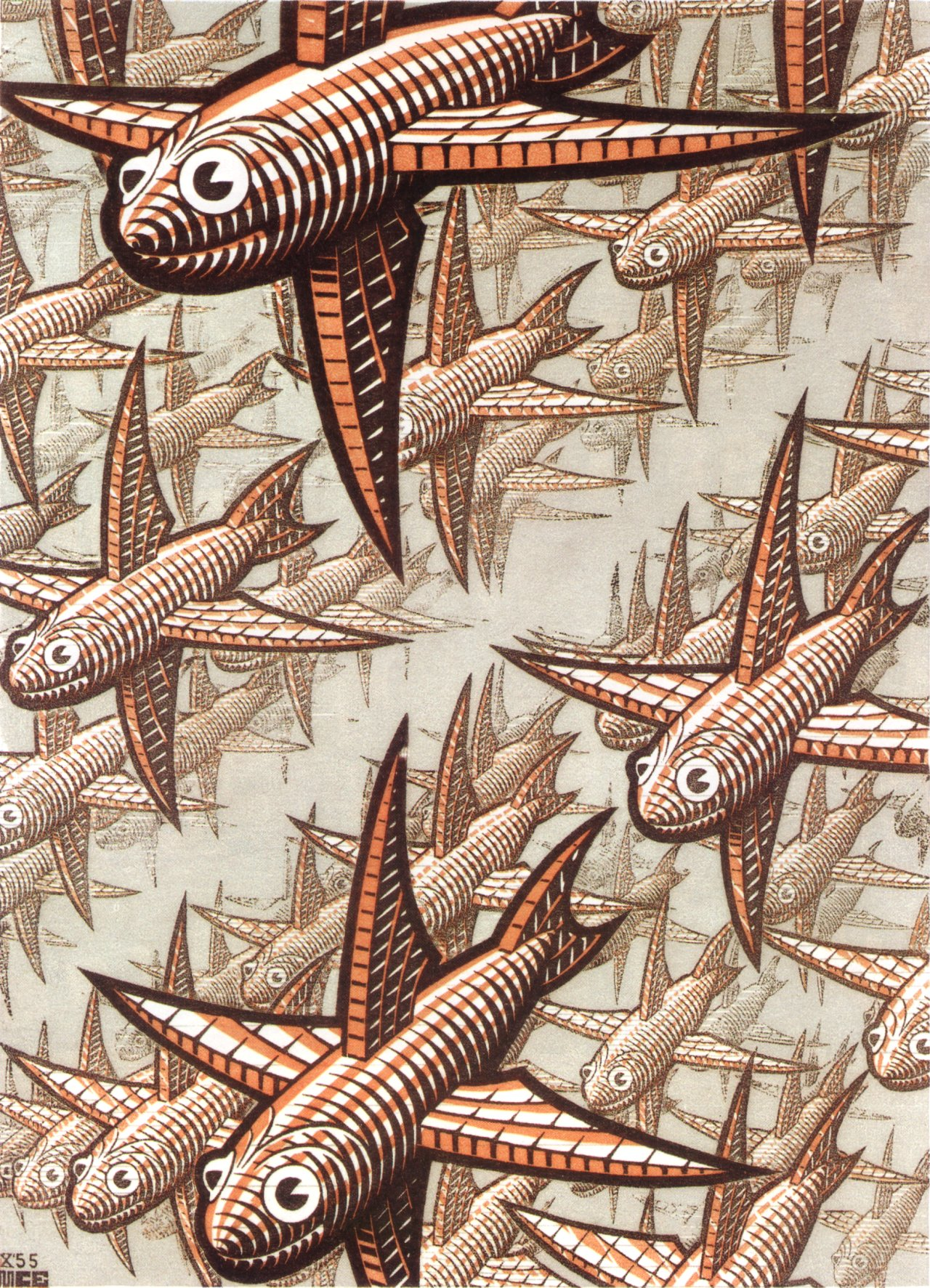 Depth, 1955 by M.C. Escher (wood engraving of fish)