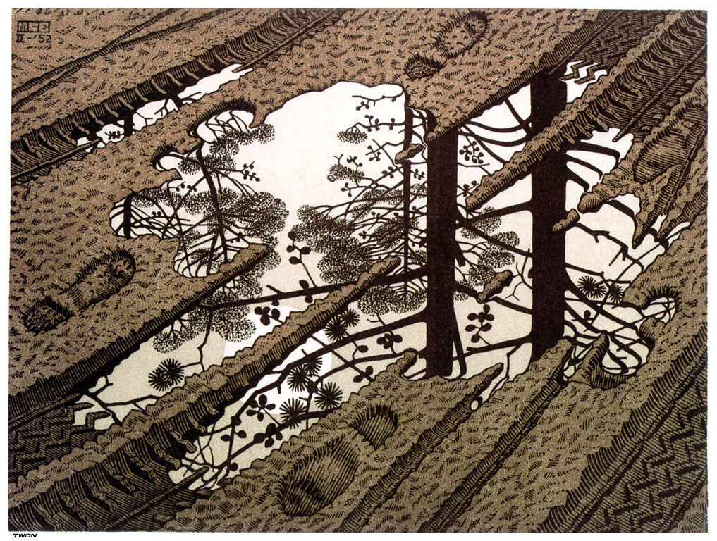 http://uploads5.wikipaintings.org/images/m-c-escher/puddle.jpg