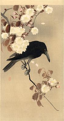 Crow on a Cherry Branch - Ohara Koson