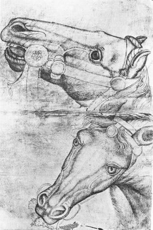 Study of Horse Heads, 1433 - Пизанелло