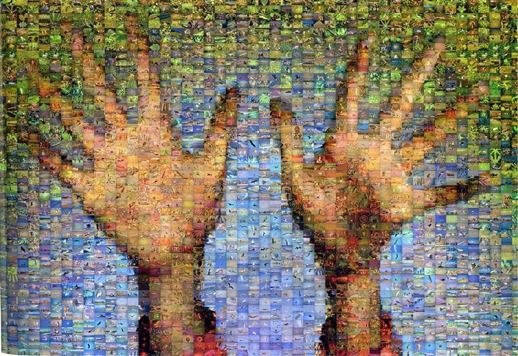 Hands - Robert Silvers