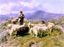 Shepherd of the Pyrenees - Роза Бонёр