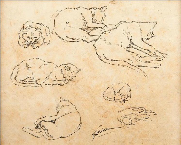 Study of Cats - Théophile-Alexandre Steinlen