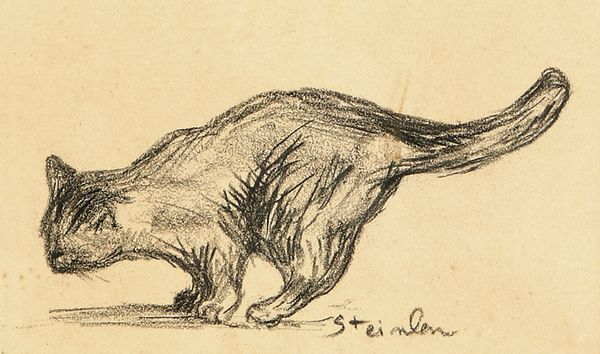 The cat - Théophile Alexandre Steinlen