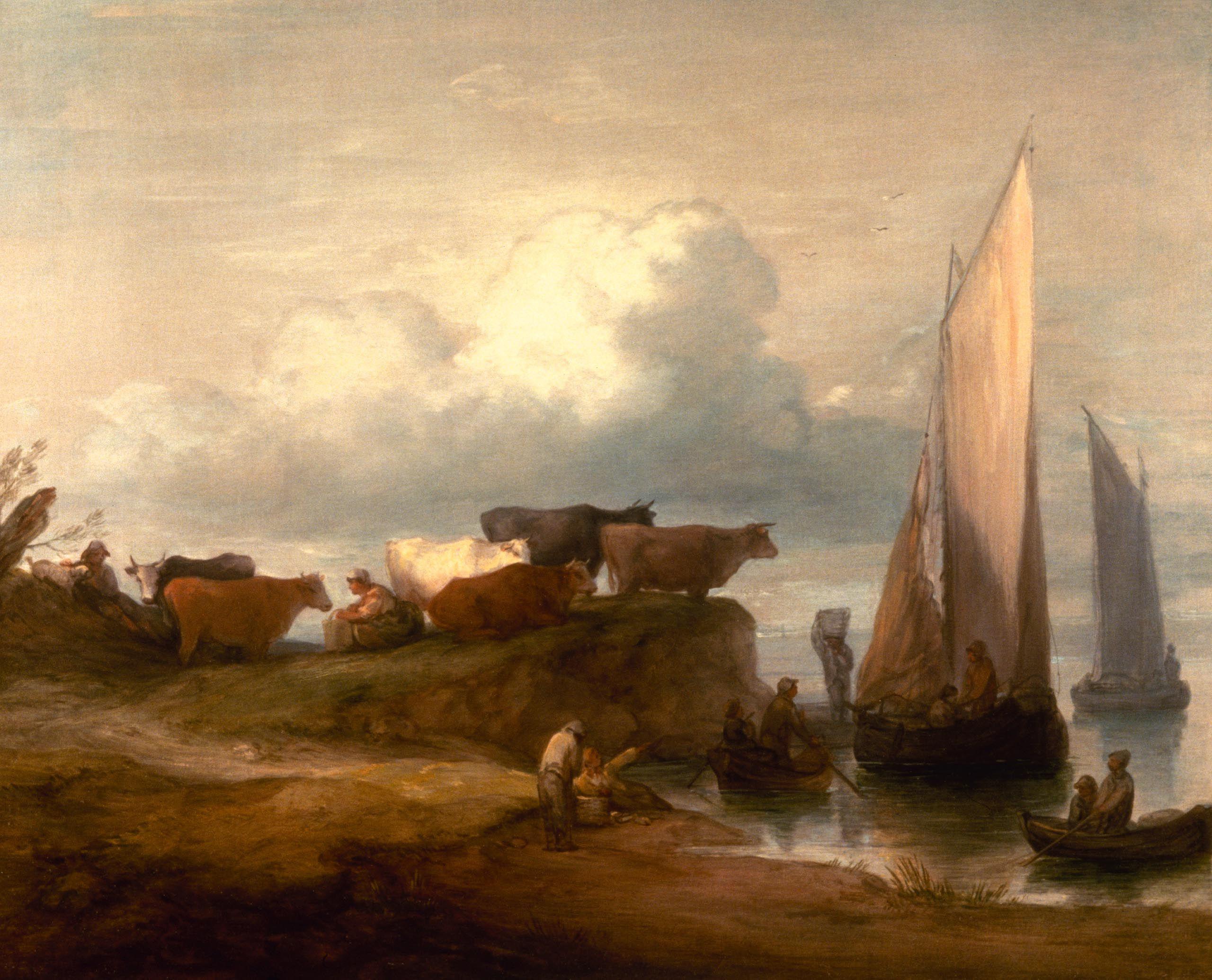 coastal humane society maine