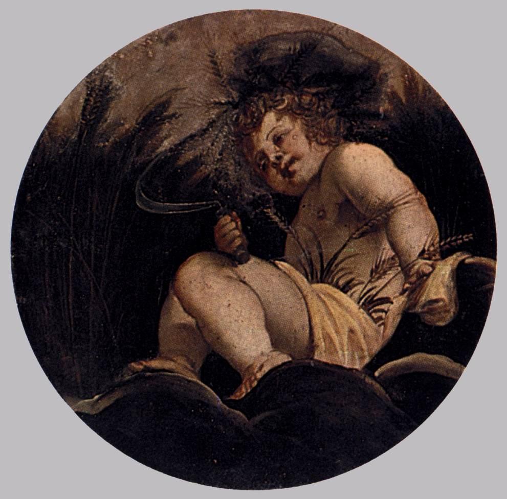 Summer, 1564